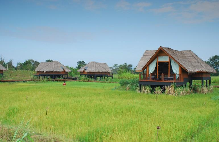 Dwellings over paddy, Jetwing Vil Uyana