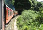 Ride the famous Shimla toy train
