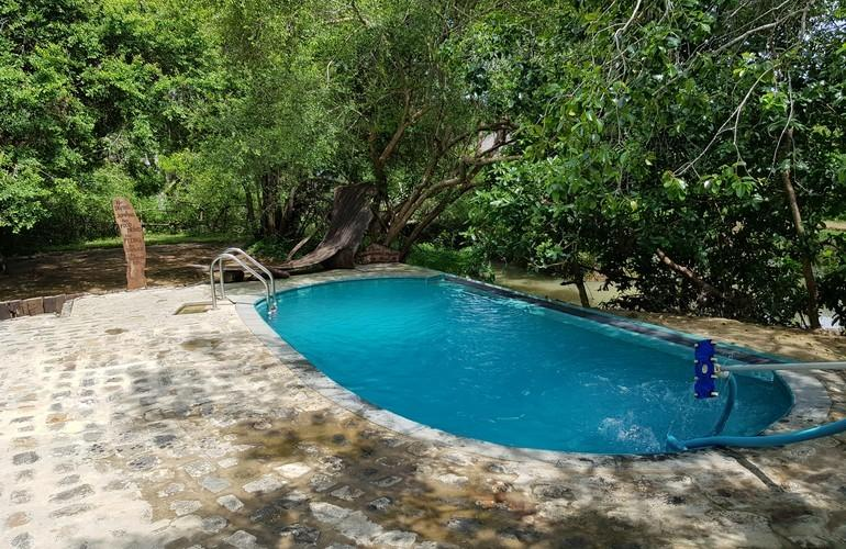 Swimming Pool, Leopard Safaris by KK Collection