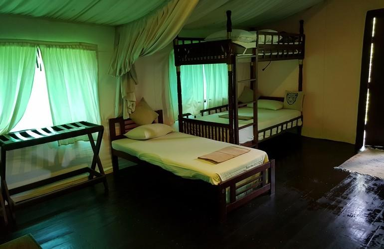 Bedroom, Leopard Safaris by KK Collection